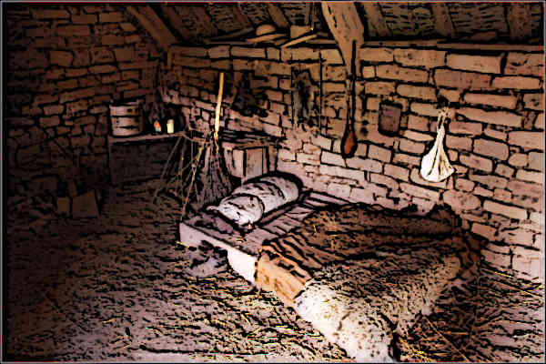 Medieval Serfdom - Bedroom and living area of a medieval serf